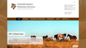 Colorado Equine Veterinary Services
