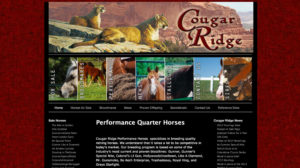 Cougar Ridge Performance Horses