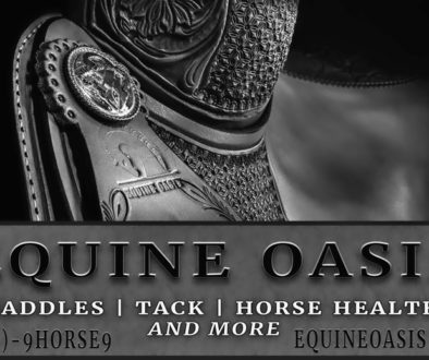 Elegant Advertising for Equine Market