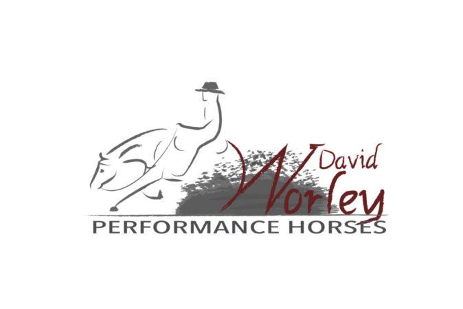 david-worley-logo-white-bg