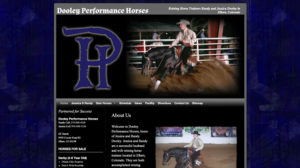 Dooley Performance Horses
