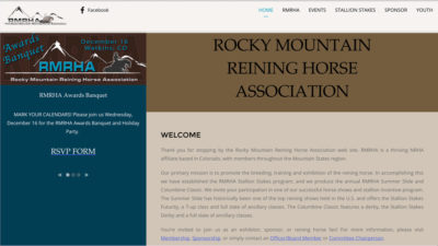 Association Websites