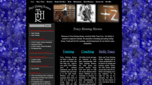Tracy Reining Horses
